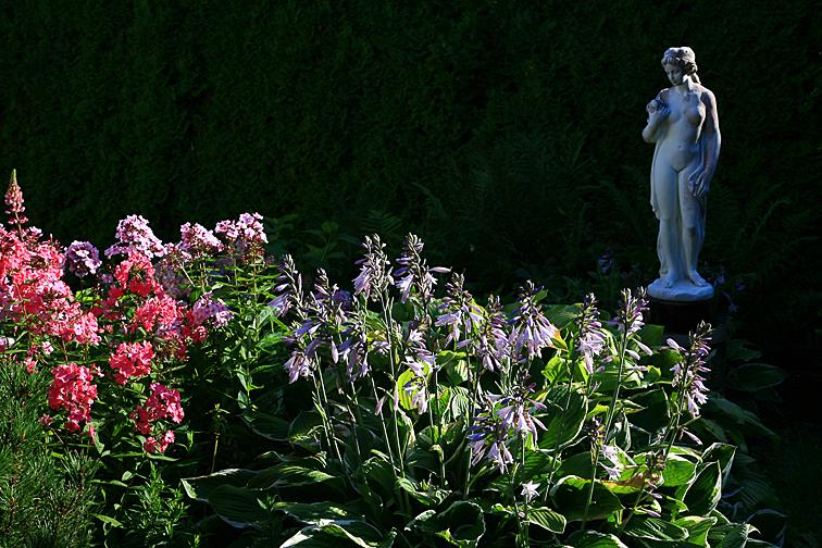 Csefalvay Alois _Im Garten