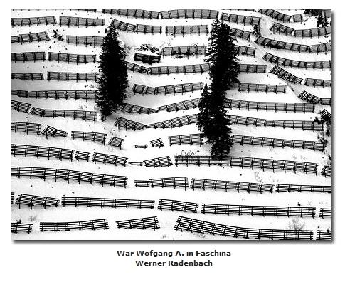 2018-06-10 23_05_16-Galerie CLICCS Foto Forum Heidenheim __ Ausstellung Natur __ War_Wofgang_A_in_Fa