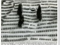 2018-06-10 23_07_36-Galerie CLICCS Foto Forum Heidenheim __ Ausstellung Natur __ HZ_1