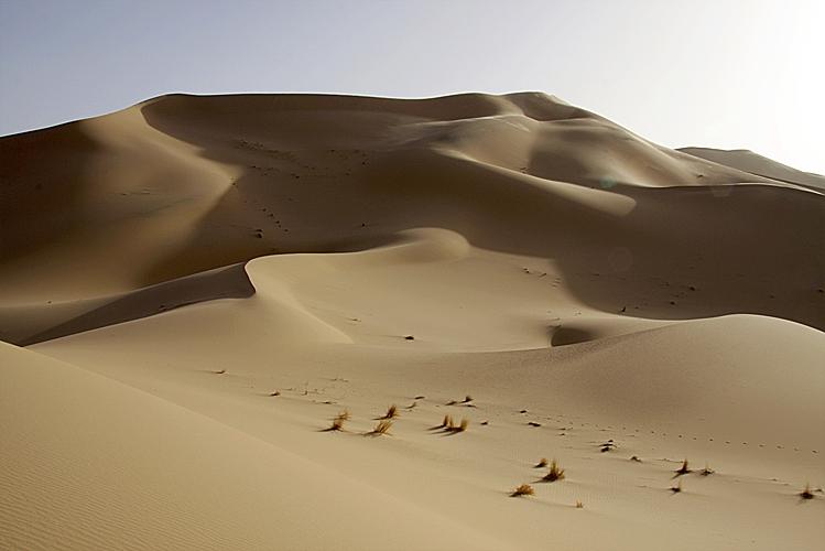 Algerien 2008 28_Wadi_Tadant