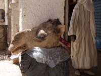 Algerien 2008 68_N3