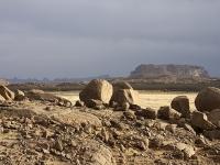 Algerien Ahaggar 25_Wildesel