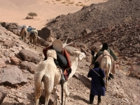 Algerien Tassili n Ajjer 28_Tassili_n_Ajjer_7