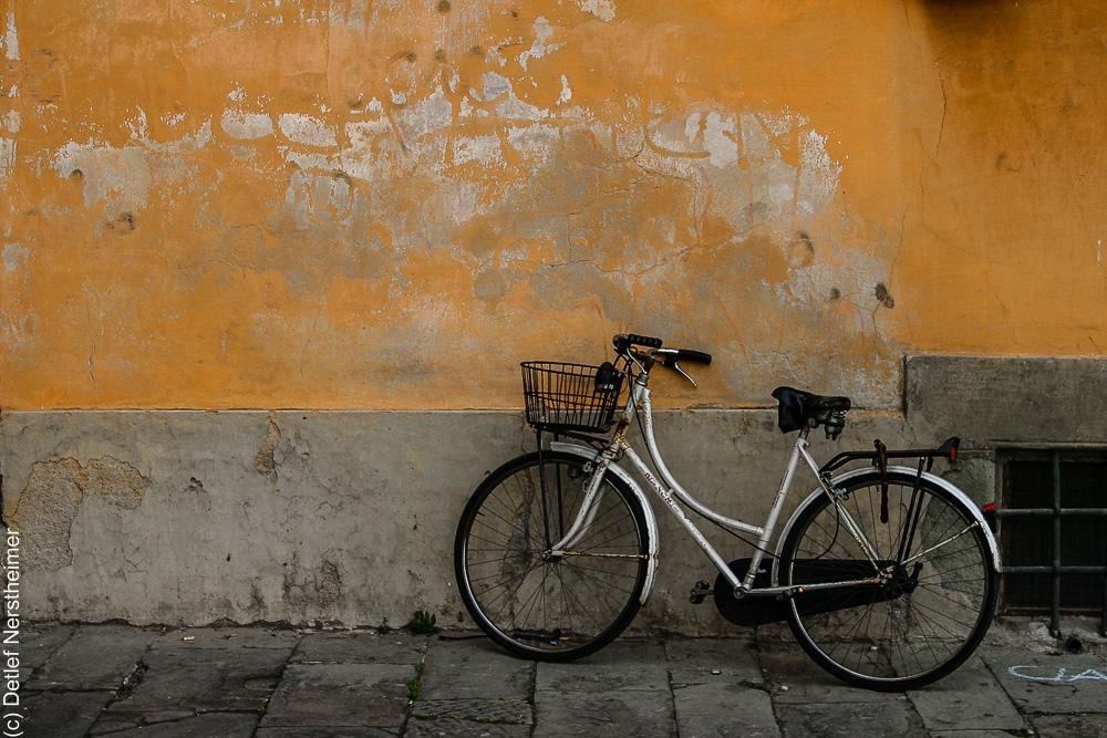 Fahrrad IMG_3283