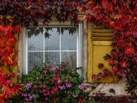 Fenster, Herbst IMG_5109