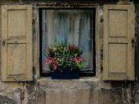 Fenster IMG_3692g