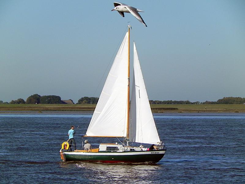 Eine flog __bers Segelschiff