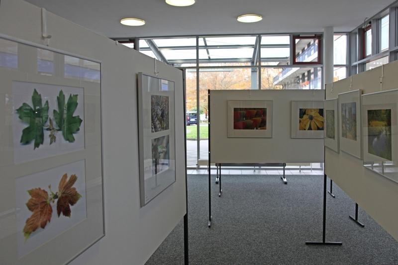 Z Ausstellung 6IMG_5988_pt