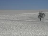 endloser winter