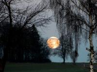 Fly me to the moon_Bildgröße ändern