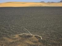 23_Farbiger Sand-082_MG_2835